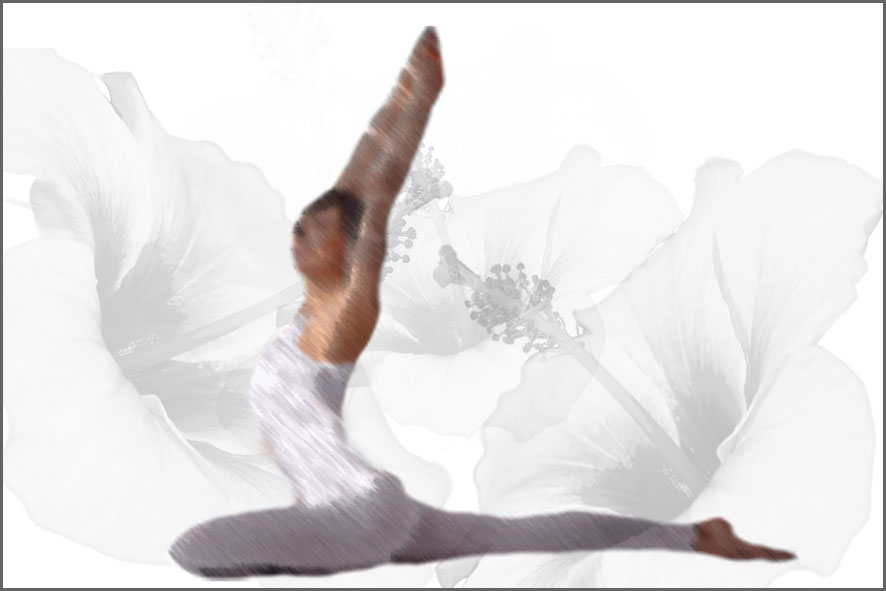 Yoga Königstaube Pigeon