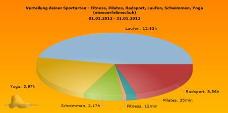Monatsübersicht Januar 2012 Sportics Sportarten