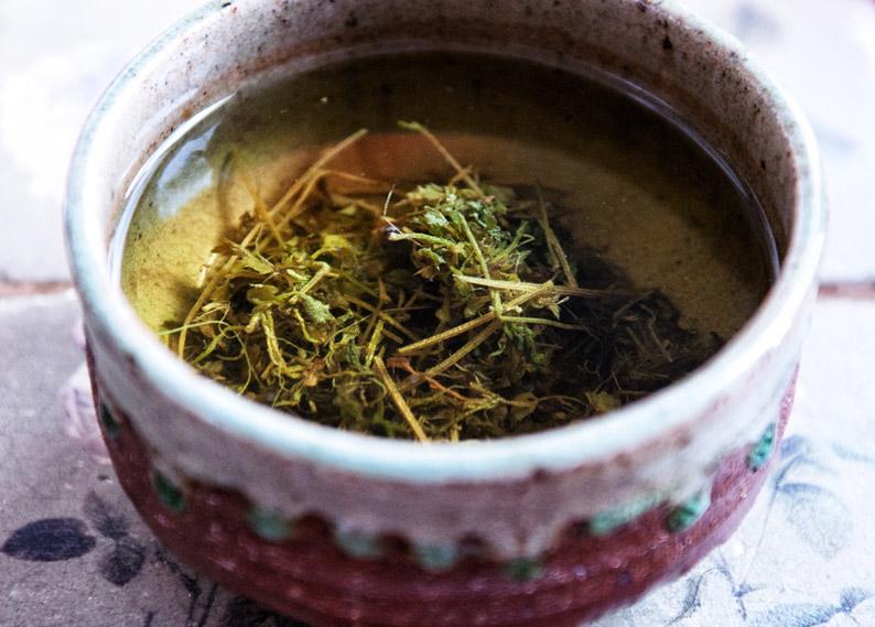 Jiaogulan Teekontor Kiel Kügelchen