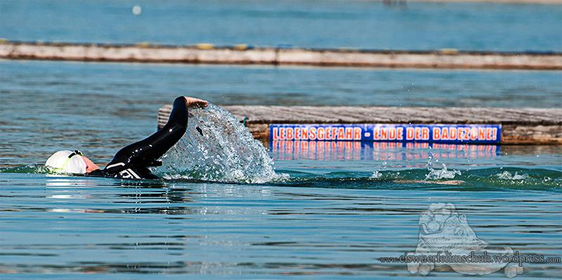 Kiessee-Eiswuerfelimschuh-Schwimmen-Training-Trainingscamp-Berlin-Schwimmen