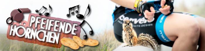 Streifenhörnchen Fuerteventura Erdmännchen Banner Tierweltgeschichten
