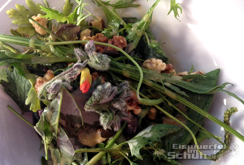 La-Mano-Verde-Wildkräutersalat-Vegan