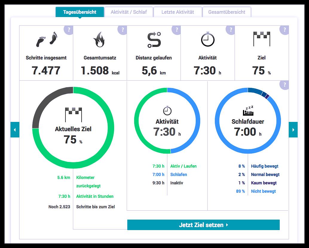 EISWUERFELIMSCHUH - VIFIT Activity Tracker Medisana (3)