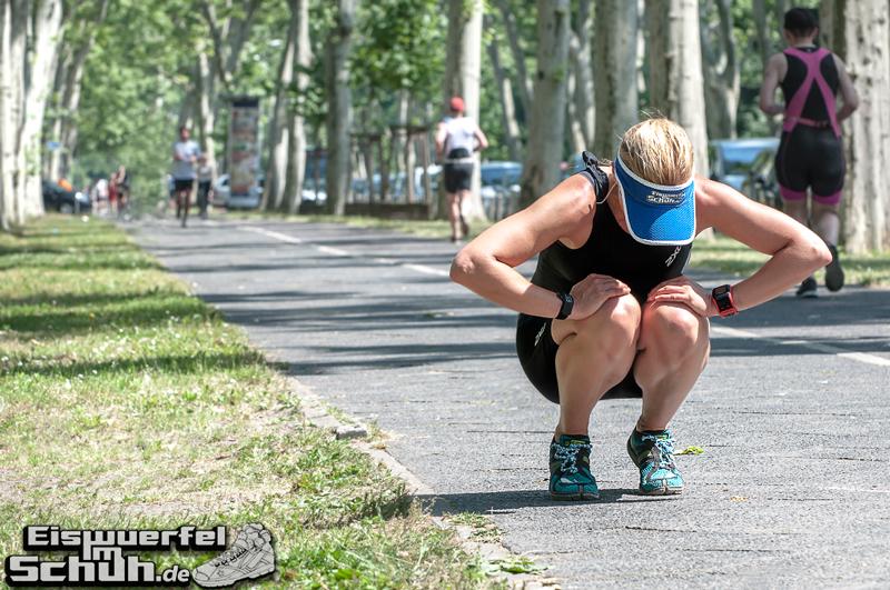 EISWUERFELIMSCHUH - BERLIN Triathlon 2014 Treptow Hauptstadttriathlon (186)