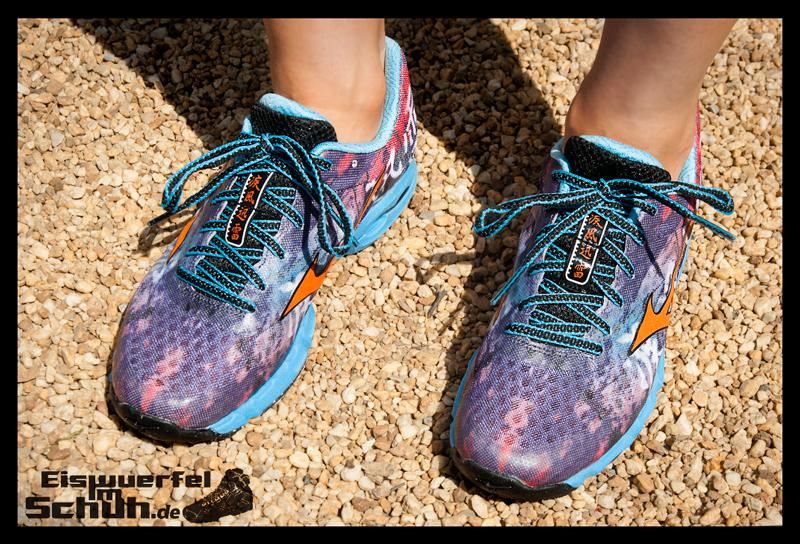 EISWUERFELIMSCHUH - MIZUNO Wave Hayate Trail Schuh im Test (1)