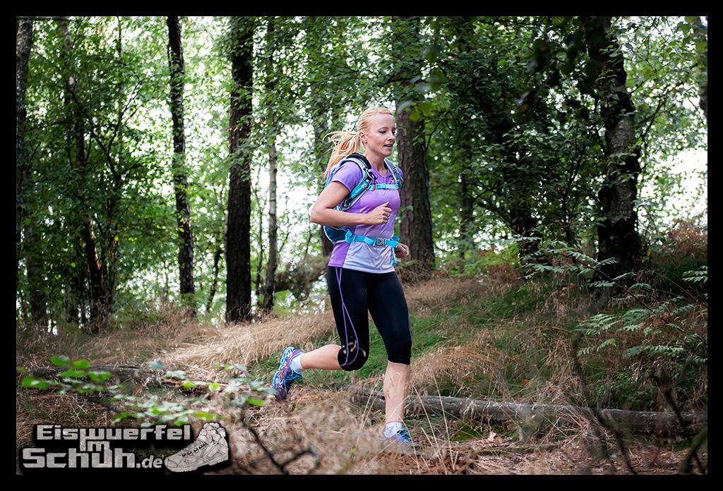 EISWUERFELIMSCHUH - MIZUNO Wave Hayate Trail Schuh im Test (15)