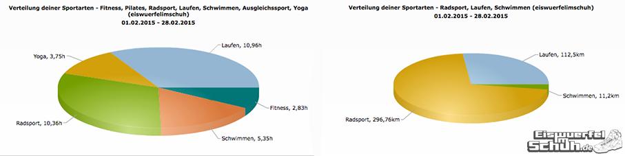 EiswuerfelImSchuh_Trainingsauswertung_Februar_2015_Triathlon Yoga
