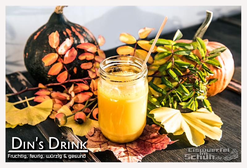 EISWUERFELIMSCHUH - Erkaeltungs Tipps 2015 Hilfe Immum Boost Abwehr Drink