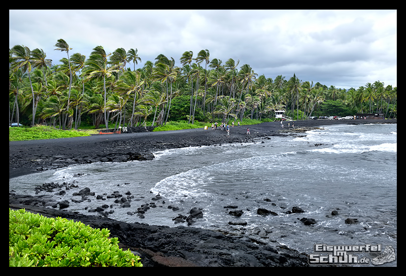 EISWUERFELIMSCHUH - Hawaii Big Island Black Beach Coconuts Turtle (1)