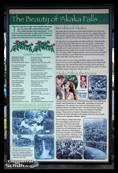 EISWUERFELIMSCHUH - Hawaii Big Island AKAKA Waterfalls State Park (12)