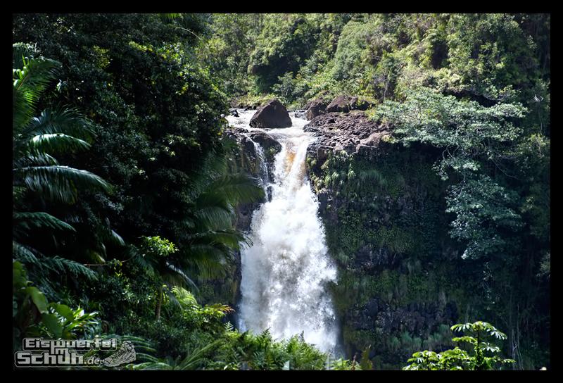 EISWUERFELIMSCHUH - Hawaii Big Island AKAKA Waterfalls State Park (47)