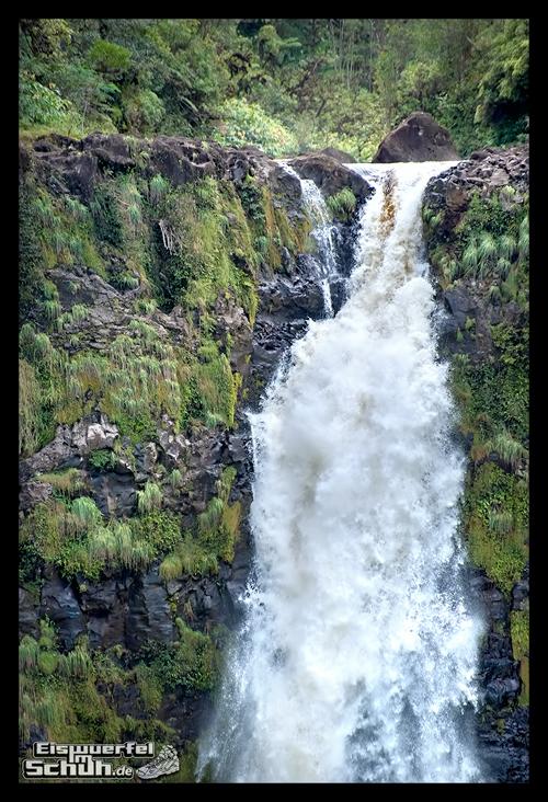 EISWUERFELIMSCHUH - Hawaii Big Island AKAKA Waterfalls State Park (61)