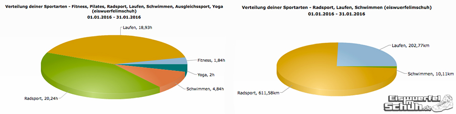 EiswuerfelImSchuh_Trainingsauswertung_Januar_2016_Triathlon-Yoga