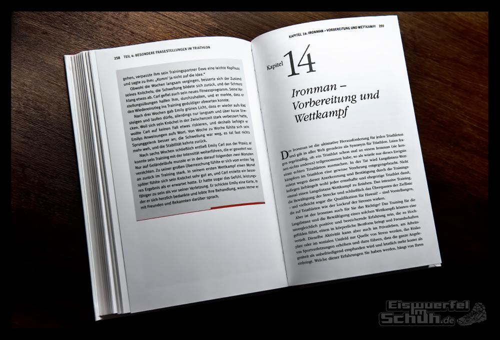 EISWUERFELIMSCHUH - Buch Review Test Triathlon Mentales Training fuer Triathleten von Jim Taylor Terri Schneider 2