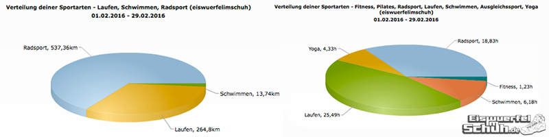 EiswuerfelImSchuh_Trainingsauswertung_Triathlon_Februar2016_Triathlon-Yoga