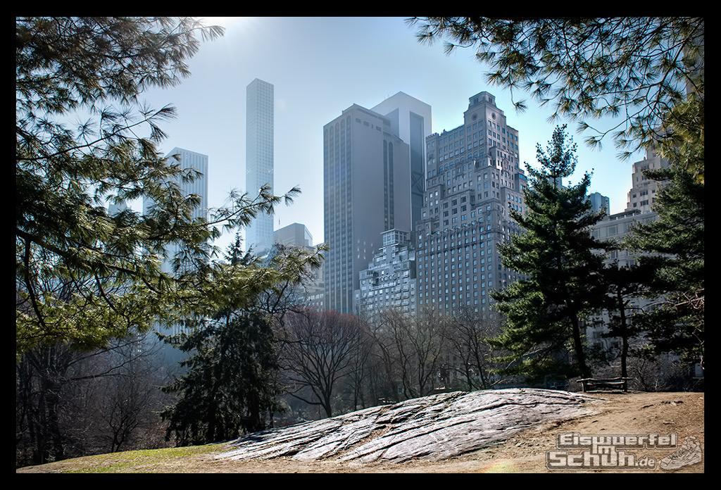 EISWUERFELIMSCHUH - Laufen Im Central Park Von New York (3)